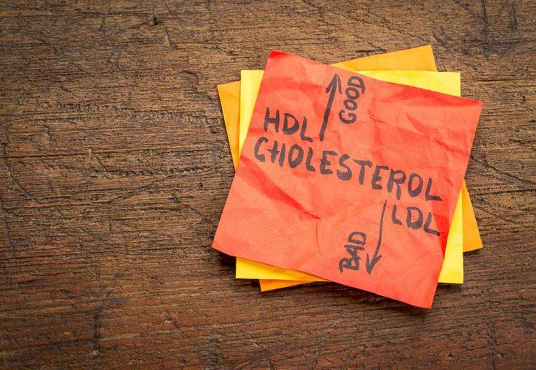 """Colesterolo LDL e HDL: un grasso indispensabile e non sempre """"buono"""""""