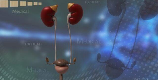 Che legame c'è tra cistite e coliche renali?