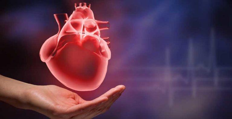 Dopo l'infarto: cosa posso o non posso fare?