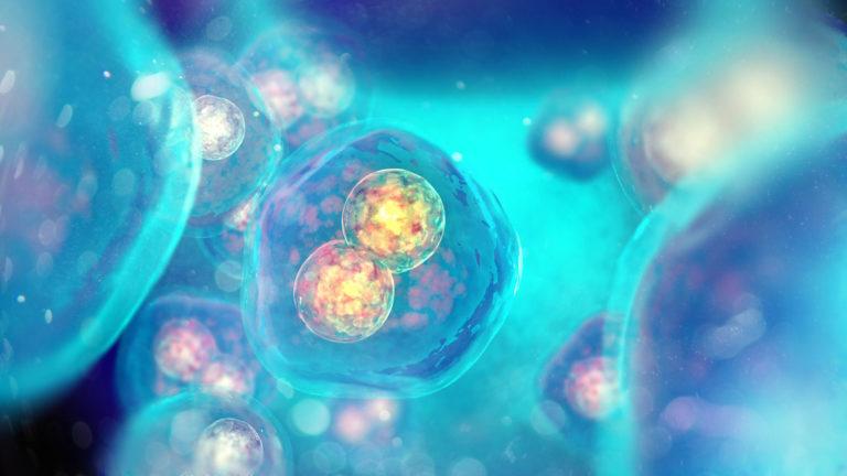 Stimolazioni ormonali e riserva ovarica: si può personalizzare?